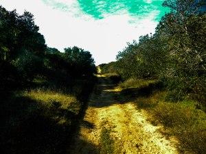 An Unwinding Path