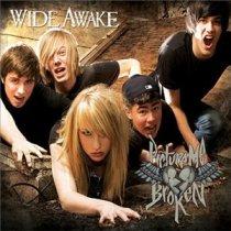 Picture Me Broken Wide Awake